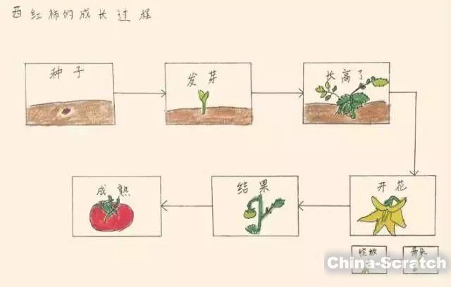 https://cdn.china-scratch.com/timg/191109/1334241410-13.jpg