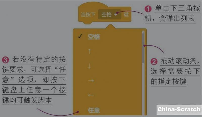 https://cdn.china-scratch.com/timg/200503/20595a264-0.jpg